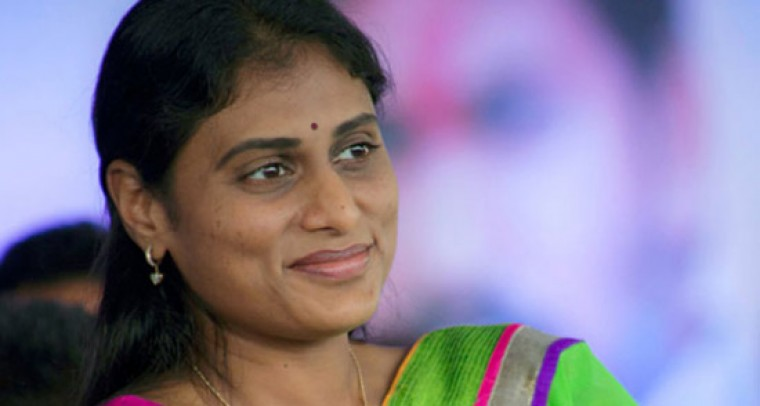 Y S  Sharmila is not in the race to contest the coming elections