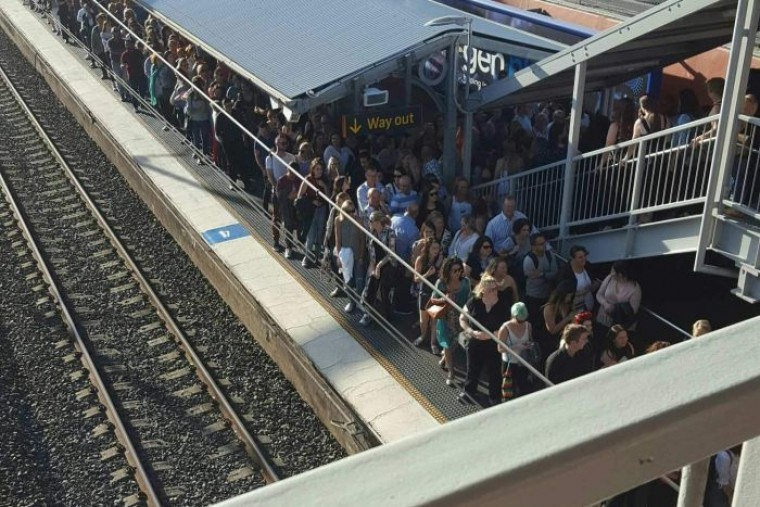 Sydney train stations at risk of overcrowding