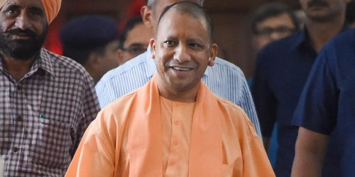 Yogi govt puts up stray cows for adoption