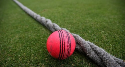 Pitch ready for maiden pink ball Test: Eden curator