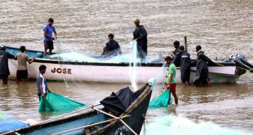 Andhra govt plans major push to fisheries sector