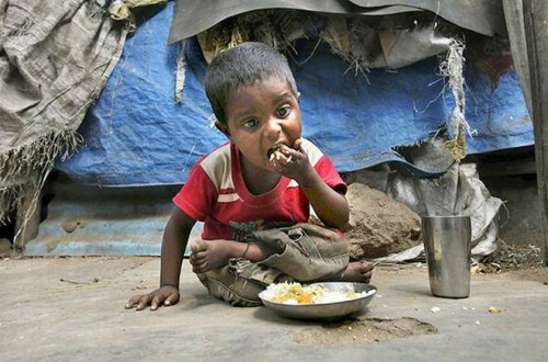position paper hunger Home essays poverty position paper poverty position paper  topics: poverty  (mdgs) in addition to the first mdg of eradicating extreme poverty and hunger, the others include achieving universal primary education, promoting.