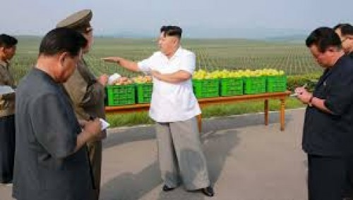 N. Korea facing acute food shortage, says UN